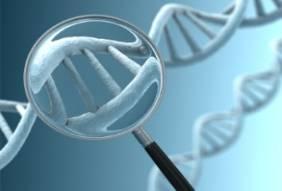 DNA_image