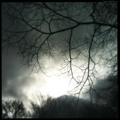 blogPhoto_1