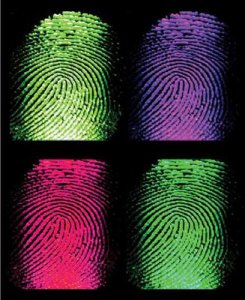 fingerprints_color